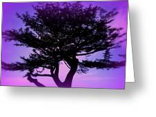 Tree Of Glory Greeting Card by Cindy Wright