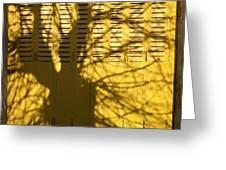 Tree Shadow Greeting Card by Bernard Jaubert
