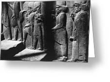 Tribute Bearers, Persepolis, Iran Greeting Card by Science Source