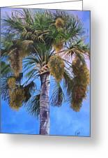 Tropical Breezes Greeting Card by Karen Casciani