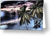 Tropical Evening Greeting Card by Cheryl Young