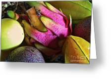 Tropical Fruit 3- Dragonfruit Arrangement Greeting Card by J R Stern