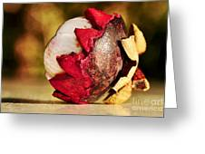 Tropical Mangosteen - Ready To Eat Greeting Card by Kaye Menner