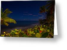 Tropical Night Greeting Card by Tim  Fitzwater