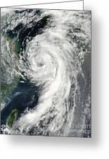 Tropical Storm Dianmu Greeting Card by Stocktrek Images
