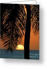 Tropical Sunset Greeting Card by Paul Topp