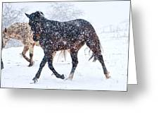 Trotting In The Snow Greeting Card by Betsy A  Cutler