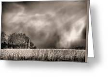 Trouble Brewing Bw Greeting Card by JC Findley