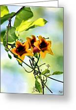 Trumpeting Spring Greeting Card by Kristin Elmquist