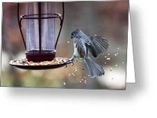 Tufted Seed Splash Greeting Card by Bill Tiepelman