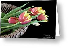 Tulips From The Garden Greeting Card by Sherry Hallemeier