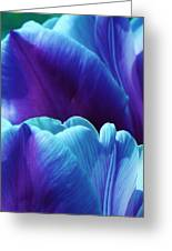Tulips Of A Different Color Greeting Card by Bruce Bley