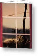 Turn Left At Dawn Greeting Card by Susan Capuano