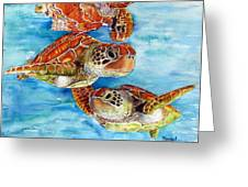 Turtle Crossing Greeting Card by Maria Barry