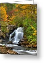Turtletown Creek Falls Greeting Card by Debra and Dave Vanderlaan
