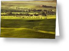 Tuscan Fields Greeting Card by Andrew Soundarajan