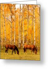 Two Horses In The Autumn Colors Greeting Card by James BO  Insogna