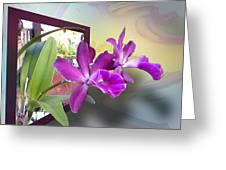 Two Orchids Greeting Card by Ginny Schmidt