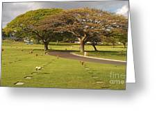 Two Trees Greeting Card by Silvie Kendall