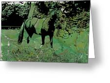 Ty In The Green Greeting Card by Vicky  Hutton