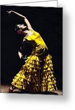 Un Momento Intenso Del Flamenco Greeting Card by Richard Young