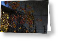 Under The Overpass Greeting Card by Ron Jones