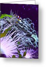 Undersea World Greeting Card by Robin Hewitt