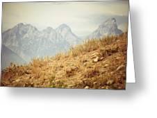 Uphill Climb Greeting Card by Betsy Barron