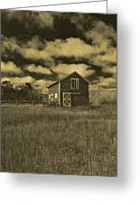Utah Barn In Orotone Greeting Card by Joshua House