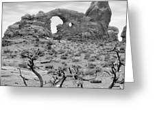 Utah Outback 37 Greeting Card by Mike McGlothlen