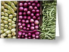 Vegetable Triptych Greeting Card by Jane Rix