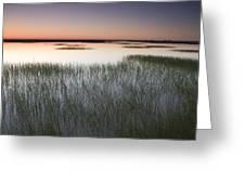 Vernal Pool At Sunrise Jepson Prairie Greeting Card by Sebastian Kennerknecht