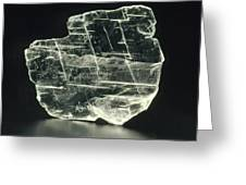 View Of A Sample Of Selenite, A Form Of Gypsum Greeting Card by Kaj R. Svensson