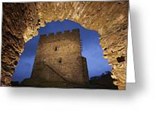 View Of Medieval Dolwyddelan Castle Greeting Card by Jim Richardson