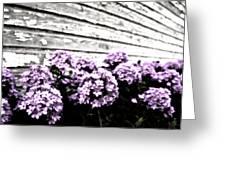 Vintage Flowers Greeting Card by Tamyra Ayles