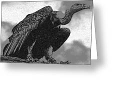 Vulture Greeting Card by Dagmar Ceki