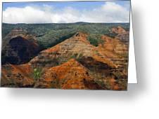 Waimea Canyons Greeting Card by Debbie Karnes