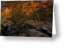 Walk On The Wild Side Greeting Card by Robin-lee Vieira