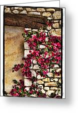 Wall Beauty Greeting Card by Mauro Celotti