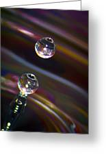 Water Drop No.17 Greeting Card by Nadya Ost