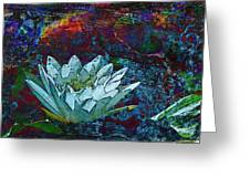 Water Lily Abstract Greeting Card by Phyllis Denton