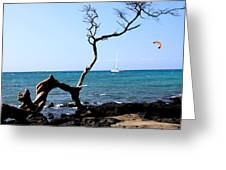 Water Sports In Hawaii Greeting Card by Karen Nicholson