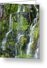 Waterfall At Columbia River Washington Greeting Card by Ted J Clutter and Photo Researchers