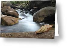 Waterfall Greeting Card by Nawarat Namphon