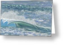 Waverider Greeting Card by Patti Bruce - Printscapes