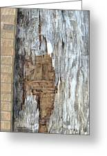 Weathered Mosiac Greeting Card by Todd Sherlock