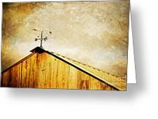 Weathervane Greeting Card by Joan McCool