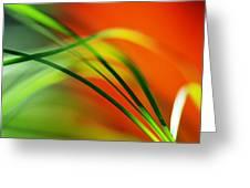 Weeds Greeting Card by Catherine Lau