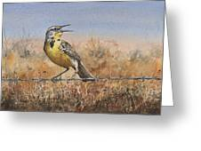 Western Meadowlark Greeting Card by Sam Sidders
