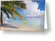 Whispering Palm On The Tropical Beach Greeting Card by Jenny Rainbow